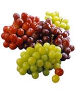 Ricerca per tipologia di vino...